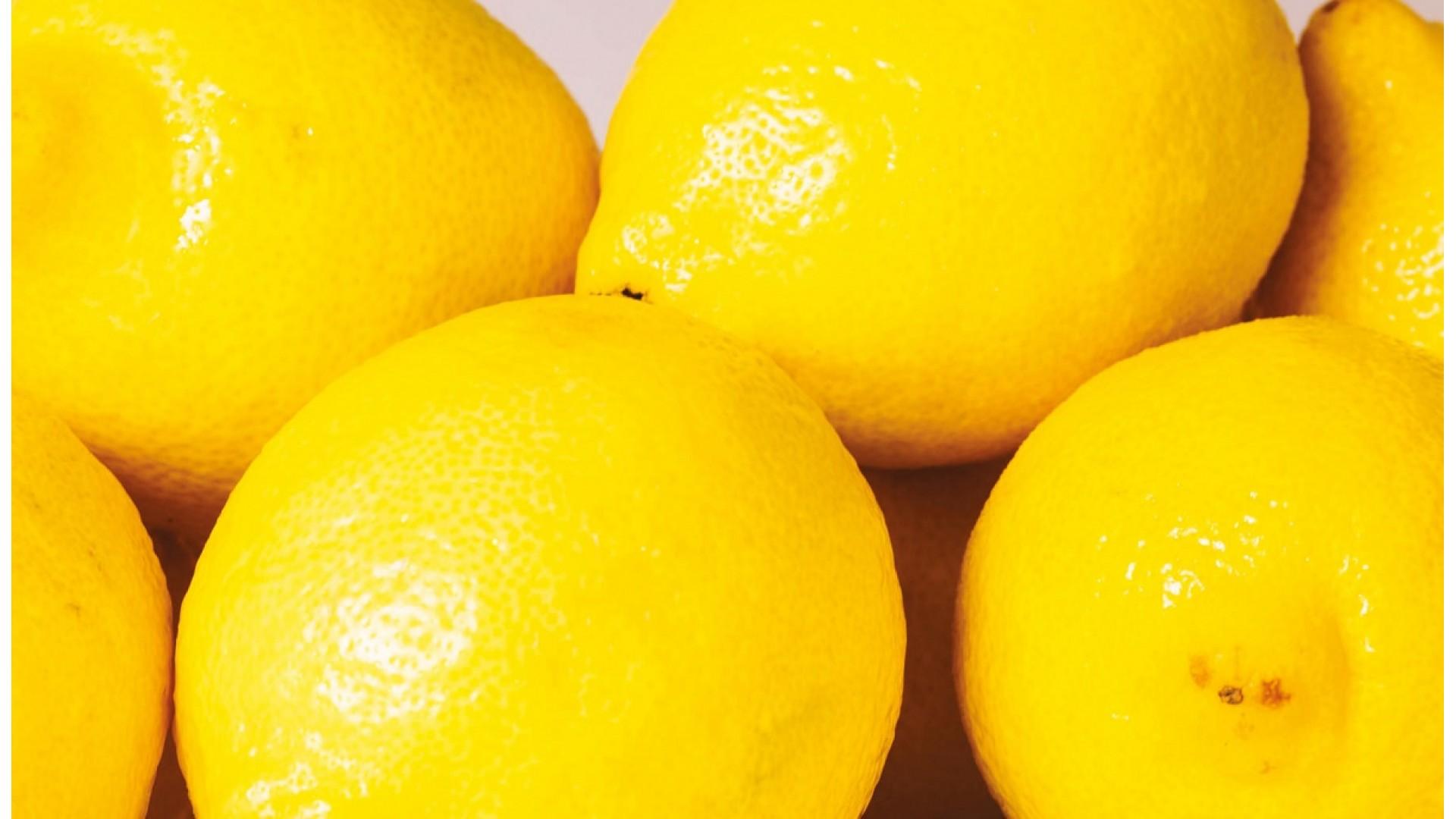 Znanost dobrog raspoloženja: psihologija mirisa uz profesora Neila Martina